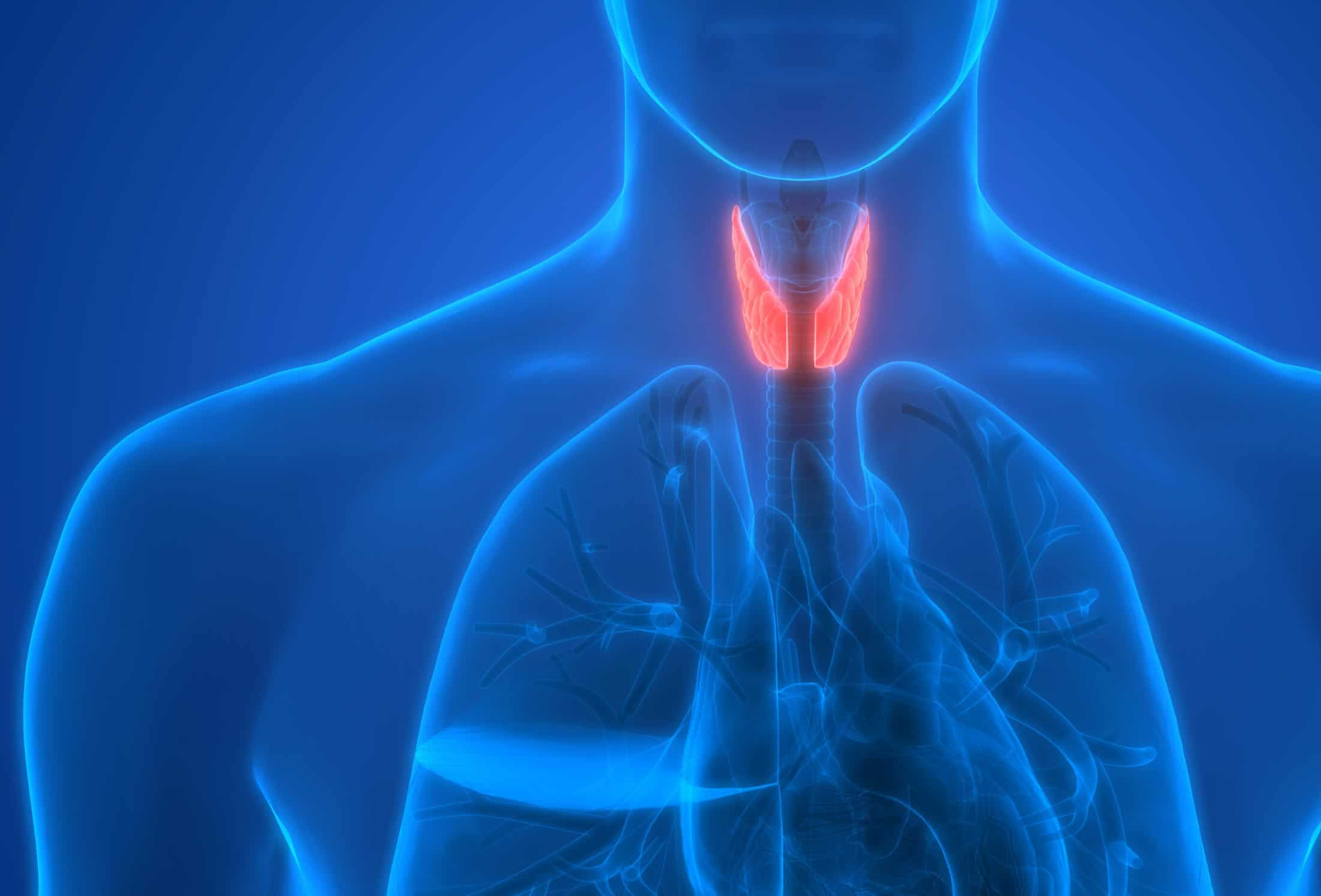 Thyroid Disorder: Often Misdiagnosed